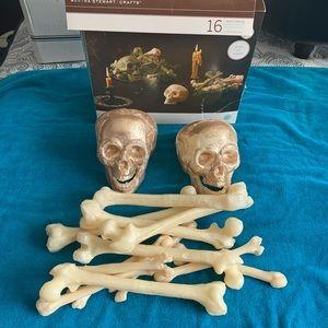MARTHA STEWART Skulls & Bones Decoration Kit